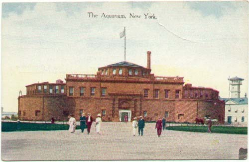 Postcard of Aquarium