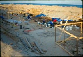 Carns Site, Coast Guard Beach, Eastham, 1990