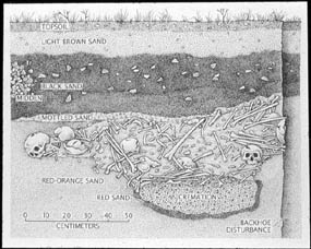 North South profile of Indian Neck Ossuary