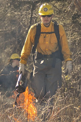 A man with a hand held fire torch and yellow fire fighting clothing walks along a stretch of dry grass.