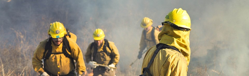 A person in yellow fire fighting gear looks back at three more people walking along the edge of a grassy field in the smoke.