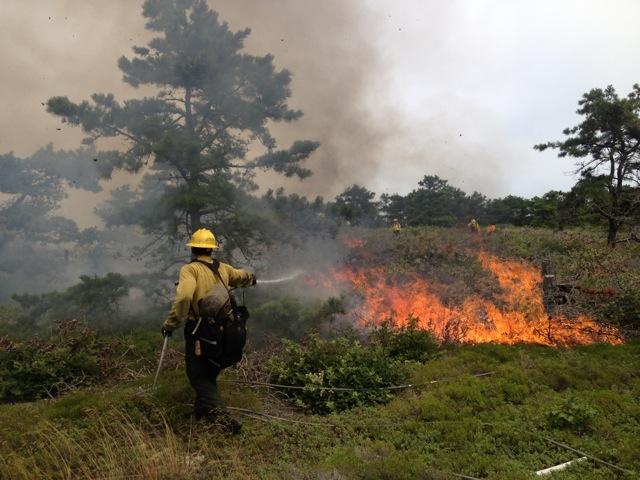 Fire Management Cape Cod National Seashore U S