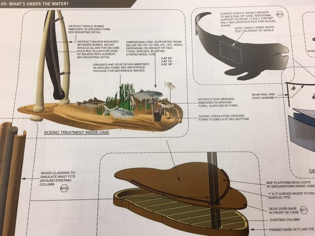 A color drawing shows the concepts for museum displays, including an acrylic whale, a large undersea diorama, and wooden platforms.