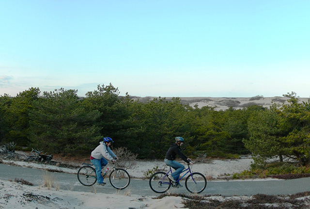Two bicyclists ride along a paved trail in dune landscape with pine trees in the background.
