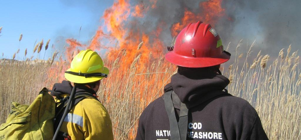 A CACO fire crew monitors a prescribed burn