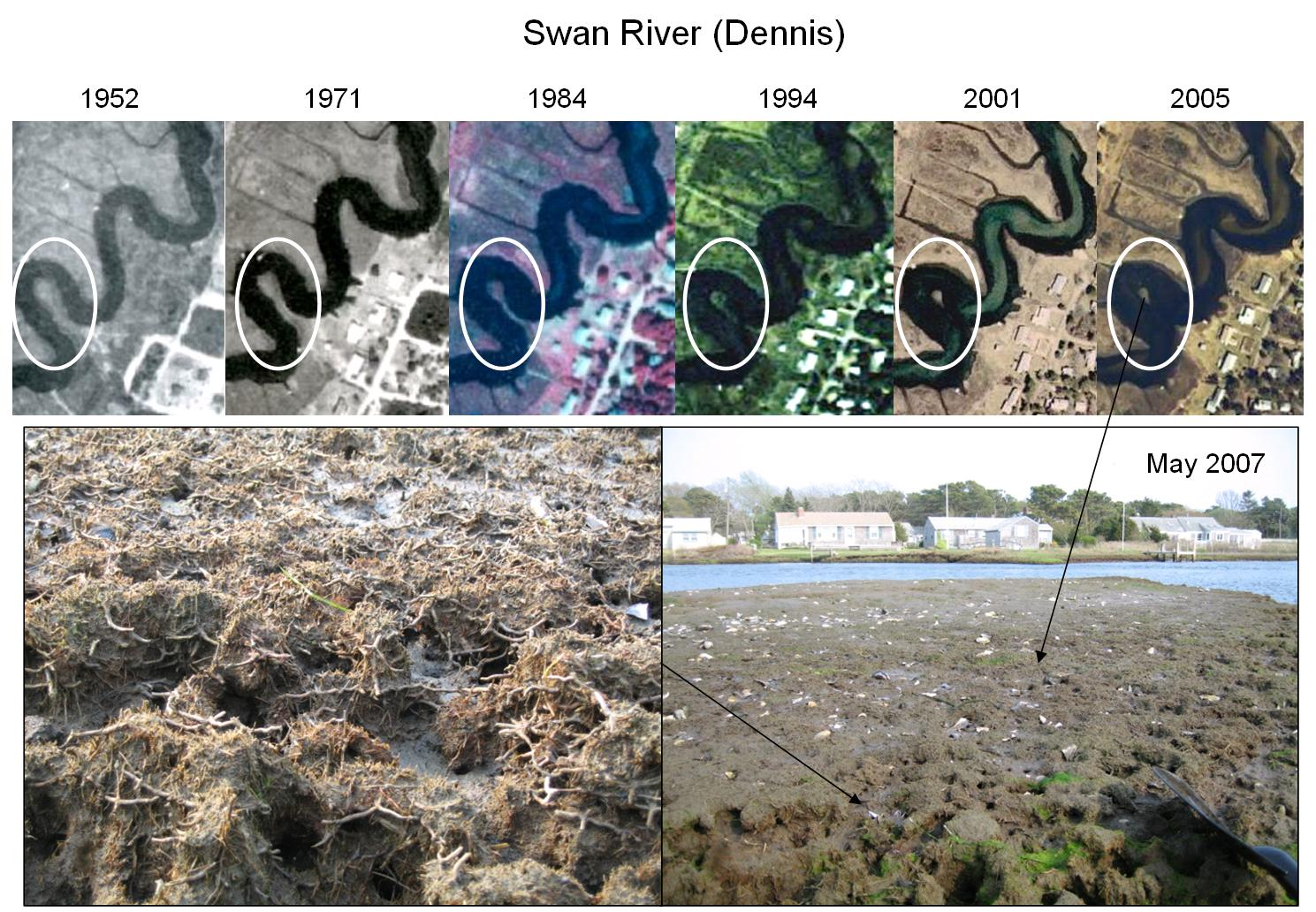 Changes in the Swan River (Dennis) over time.