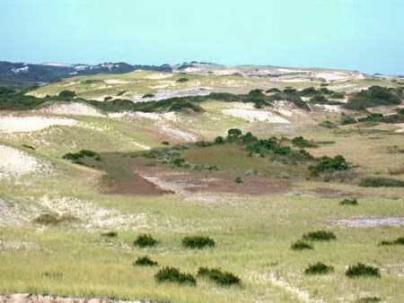 Dune valley from High Head