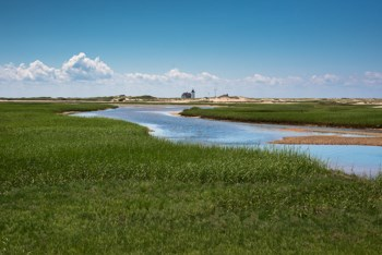 Hatches Harbor salt marsh