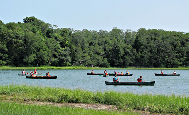 Several canoes paddle across a gentle pond under a blue sky.