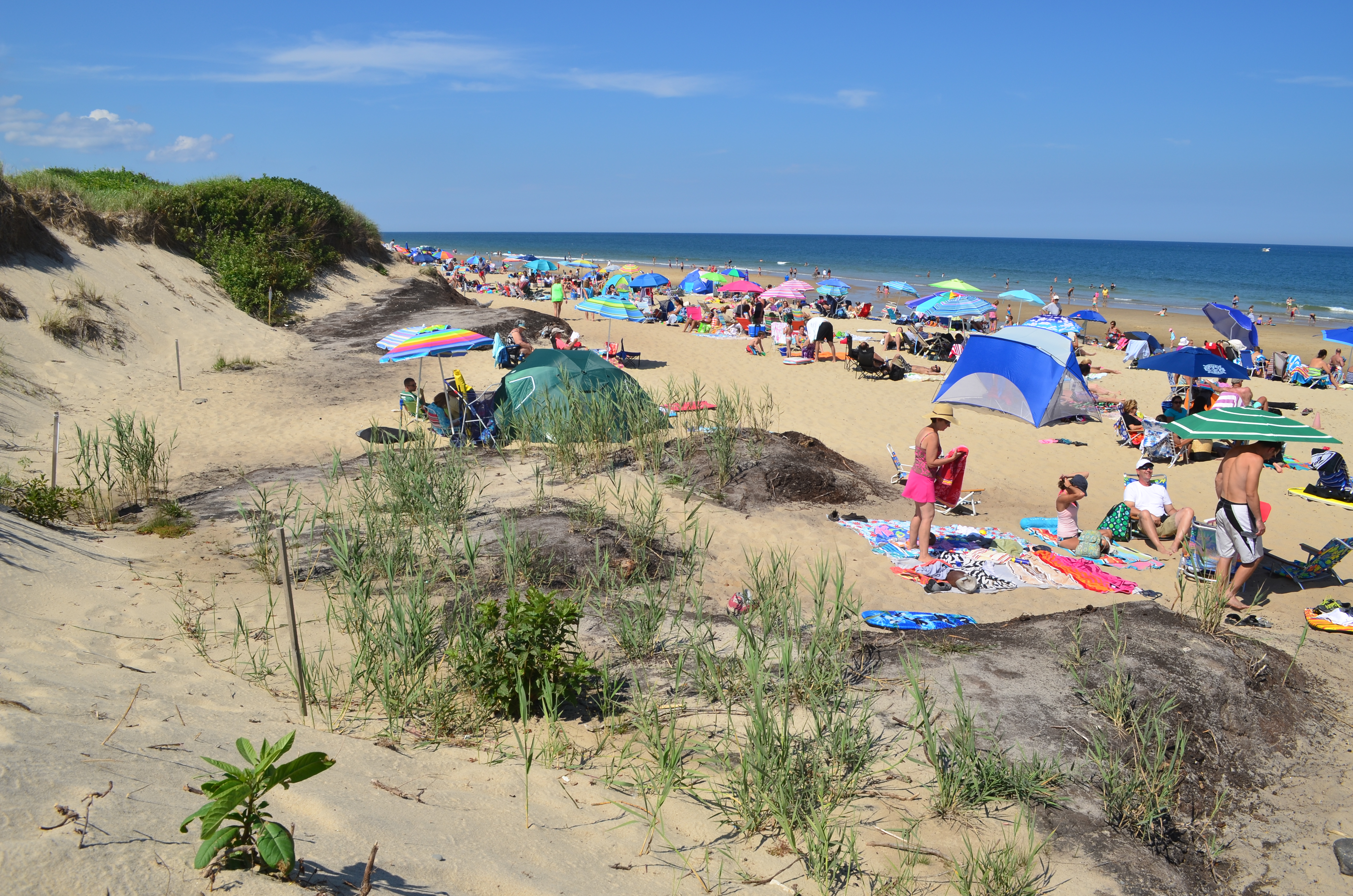 Cape Cod National Seashore Creates Over $638 Million Dollars
