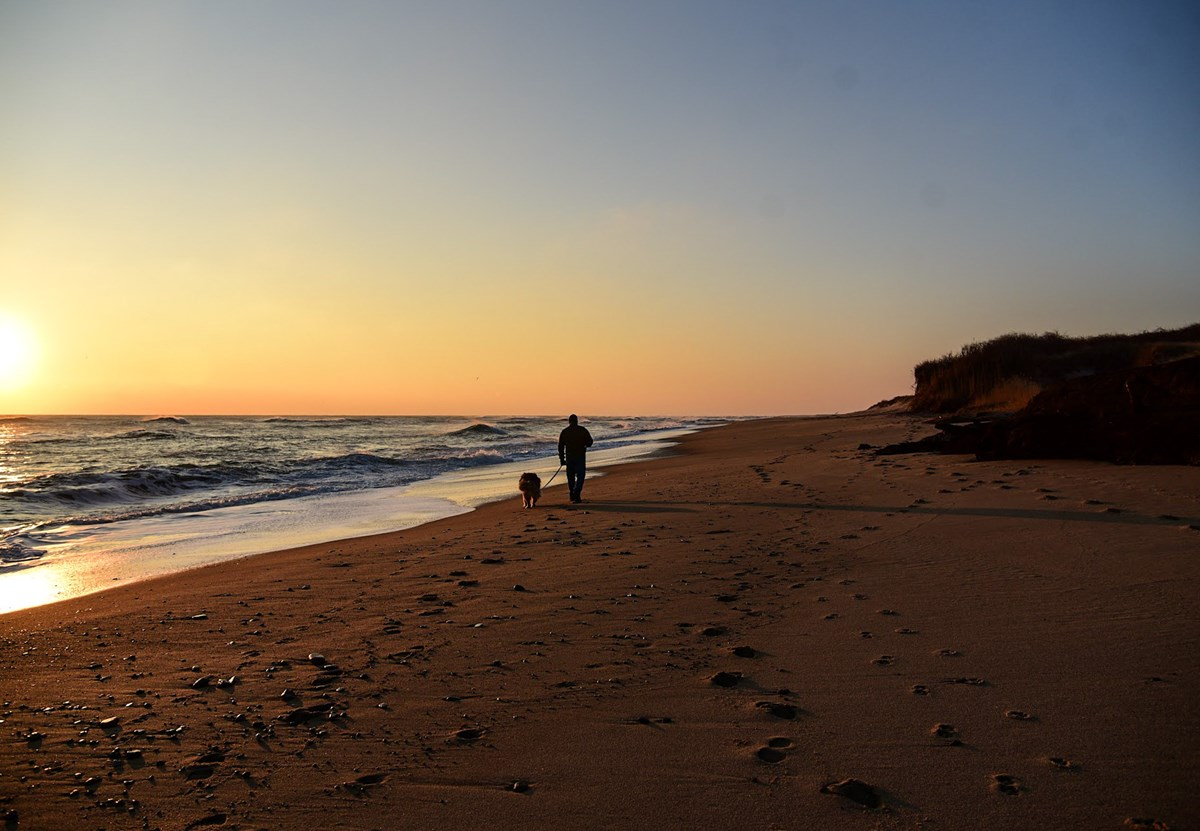 A person walks on the beach at sunrise with a leashed dog