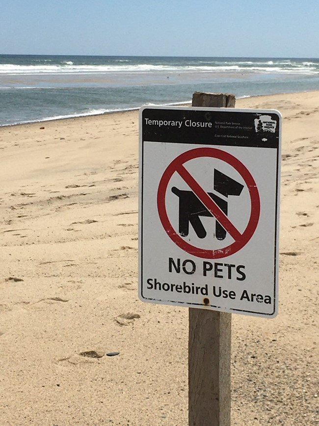 Image of a sign on the beach advising no pets