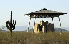 Elderly Saguaro with Casa Grande Ruins 'Big House' in the distance.
