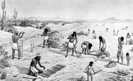 Paul Coze illustration of Hohokam tending a field
