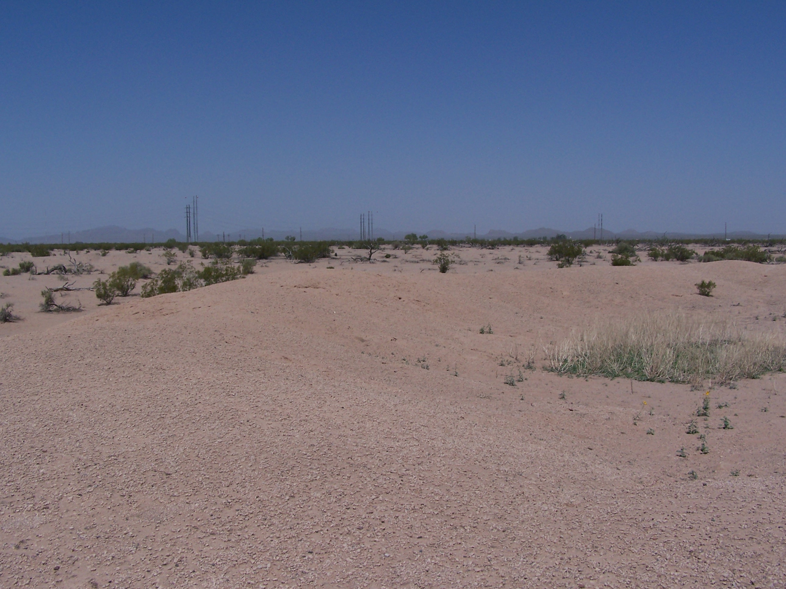 The desert seems featureless and empty