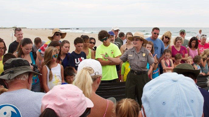 Interpreter talking to the public at a sea turtle nest excavation.
