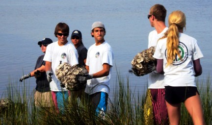 Members of the Youth Conservation Corps work on restoring an oyster sill.