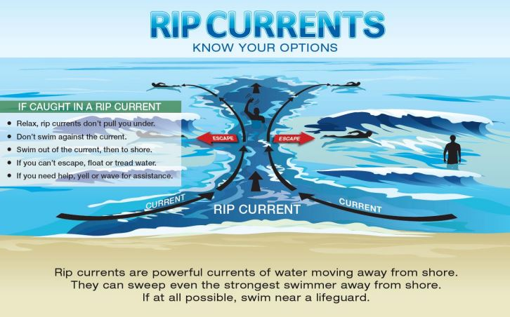 Graphic showing your options if caught in a rip current.