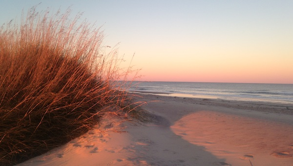 Sunset and sea oats at Cape Hatteras National Seashore