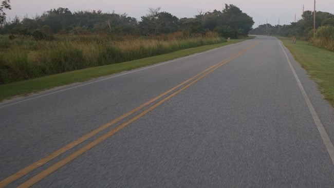 Road within Cape Hatteras National Seashore