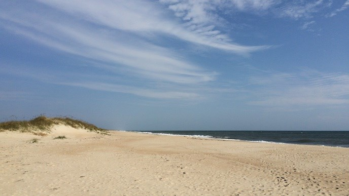 A stretch of sandy beach in Cape Hatteras National Seashore