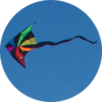 Kite flying in the wind
