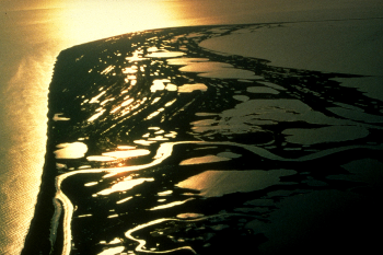 Low angle sunlight makes numerous wetlands and beach ridges glow in an aerial image of a coastline