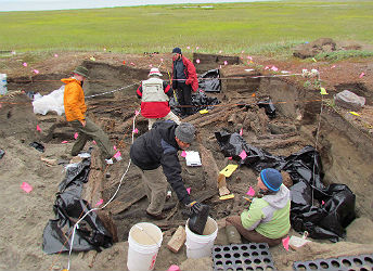 Scientists unearth house timbers in a rectangular dig site