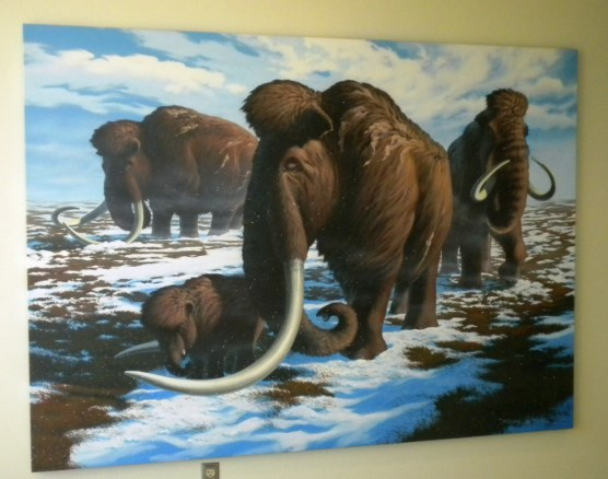 Painting of a herd of Wooly Mammoth
