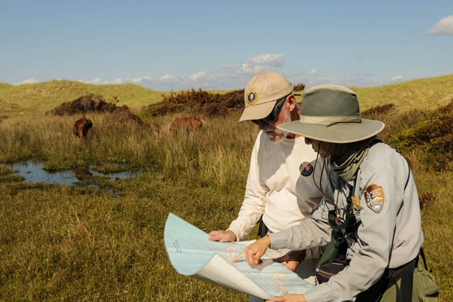 A volunteer works with a ranger on locating horses