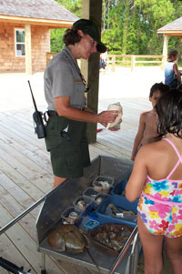 The Discovery Cart program is a good way to identify all your beach finds.