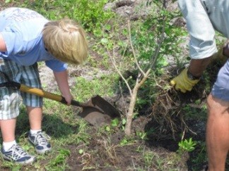 Local Students Plant a Rain Garden