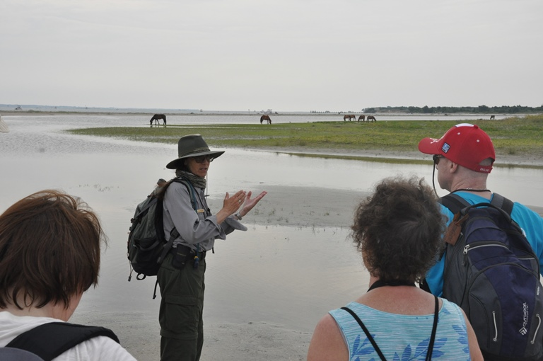 Sue and group with horses in distance-PR 15 1013 Horse Sense & Survival Tours