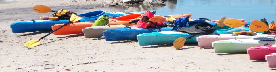 Kayaks parked on the sand.