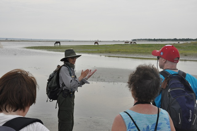 Park biologist, Dr Sue Stuska, expalins wild horse behavior to the group on a Horse Sense and Survival tour on Shackleford Banks