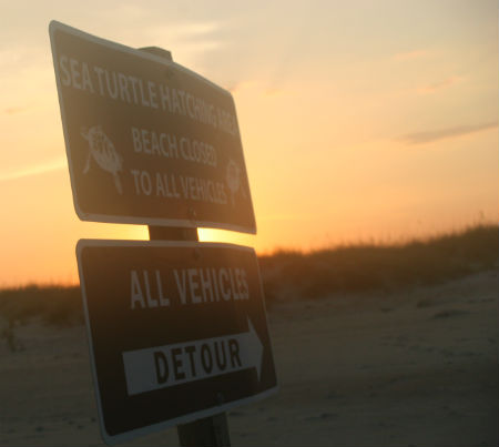 Sea Turtle Hatching Area Beach Closed to All Vehicles