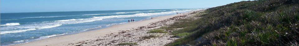 Visitors enjoying a stroll along Canaveral National Seashore's pristine beach
