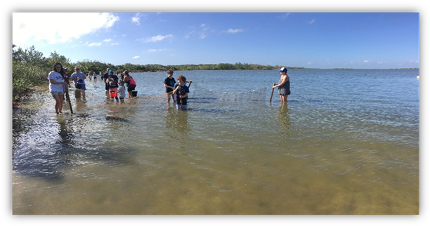 Seining the Lagoon