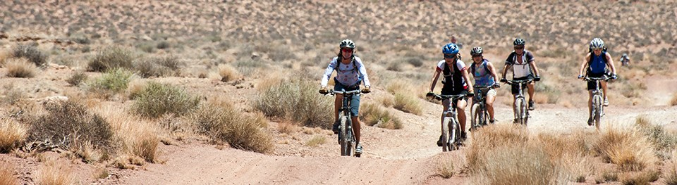 cyclists ride on a dirt road