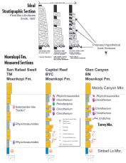 "Stratigraphic measured sections of Glen Canyon NRA and Capitol Reef NP and Smith's Model of ""Meandering River Estuarine Systems"""