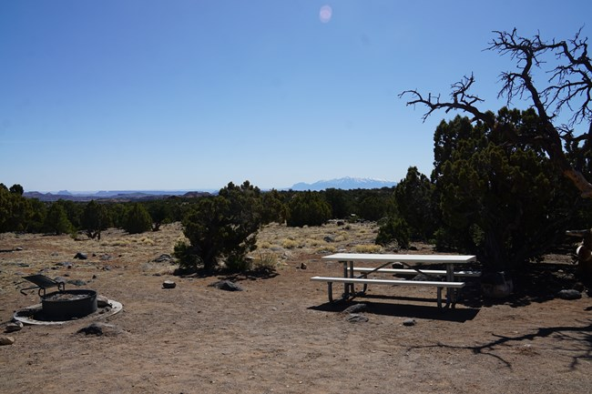 Campsite with picnic table, fire pit, juniper trees, and views of mountain.