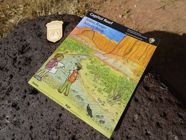 Colorful junior ranger booklet with a wooden badge sitting on a black rock.