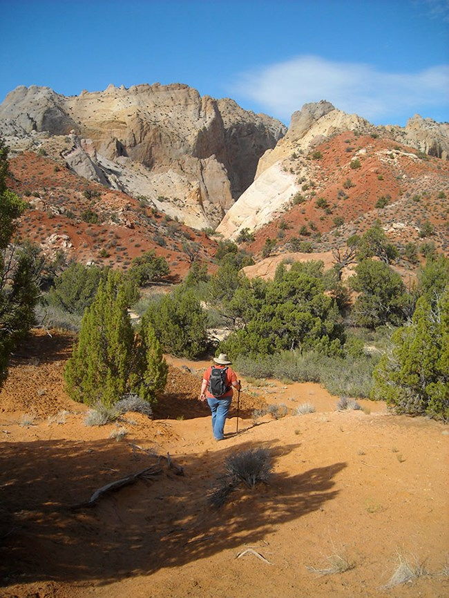 Hiker in Surprise Canyon