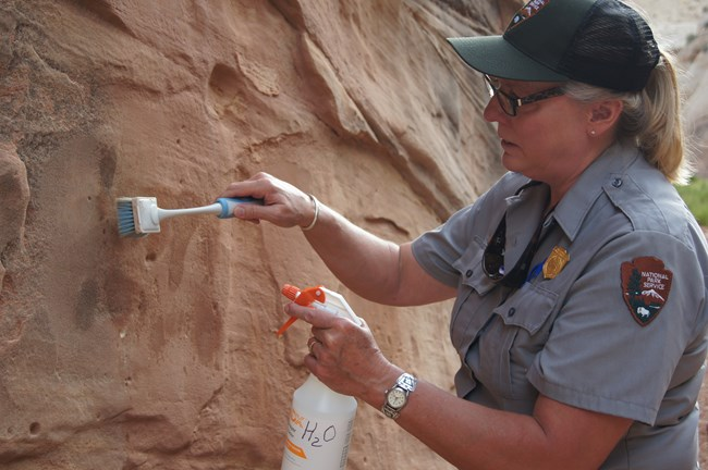 park ranger removing graffiti with water and a soft brush