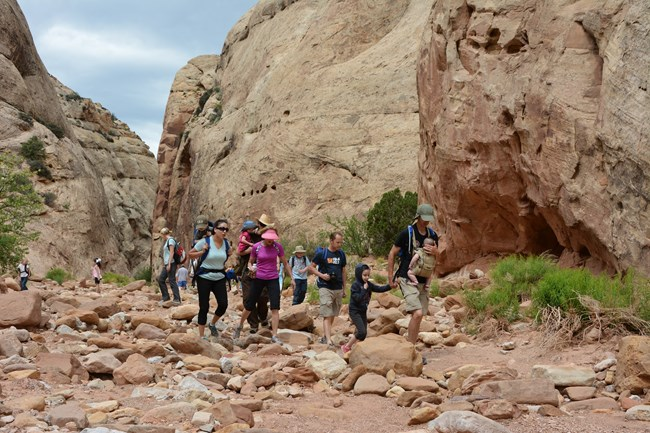 Group of adults, children, and babies in backpacks hiking in a rocky bottomed canyon, with some green shrubs and blue sky.