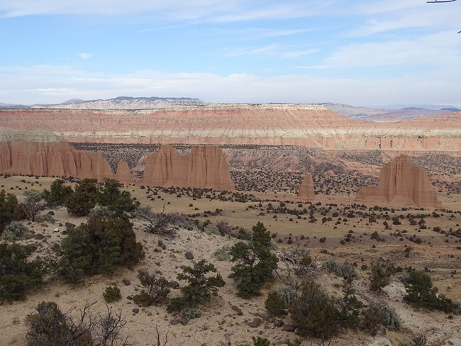 Long line of narrow red rock monoliths in a red valley, with red, tan and green cliffs above.