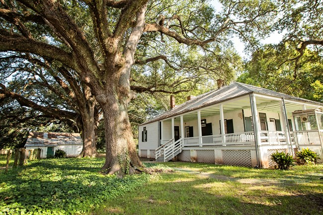 magnolia plantation history cane river creole national historical