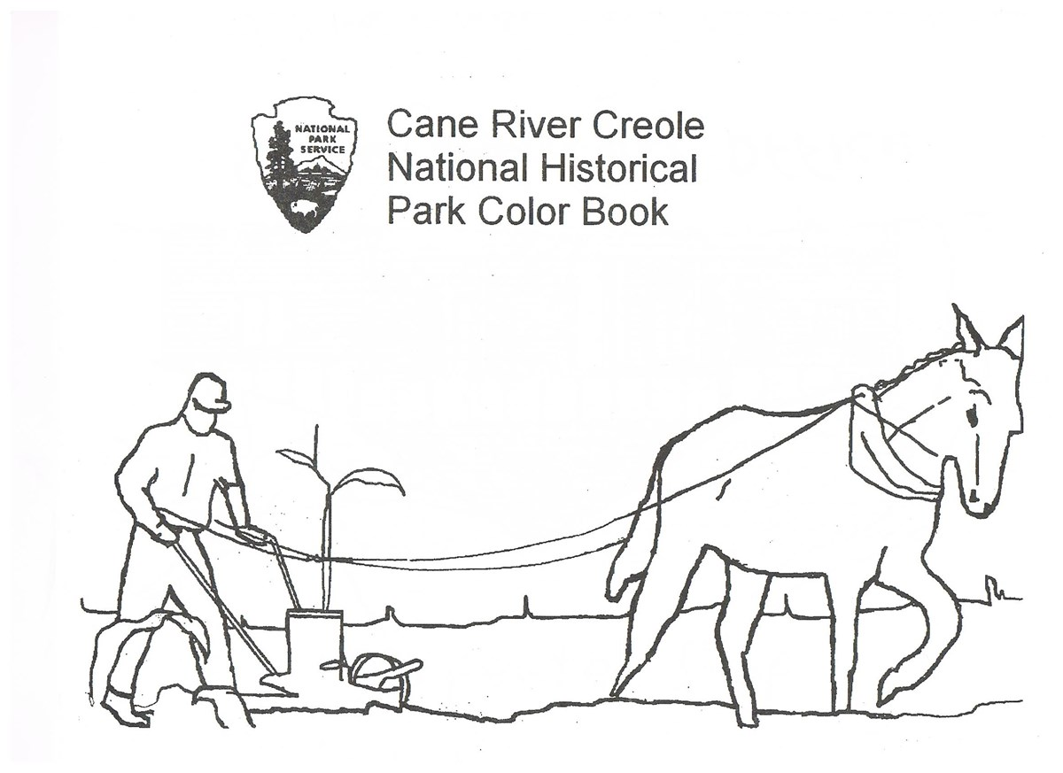 Drawing of a man plowing with a mule.