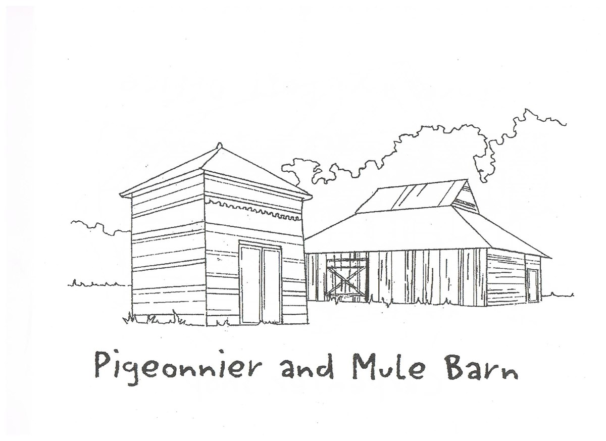 Drawing of the Oakland Plantation Pigeonnier and Mule Barn.
