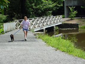 Visitor walking her dog on a 6ft. leash around the Front Lake at Carl Sandburg Home National Historic Site.